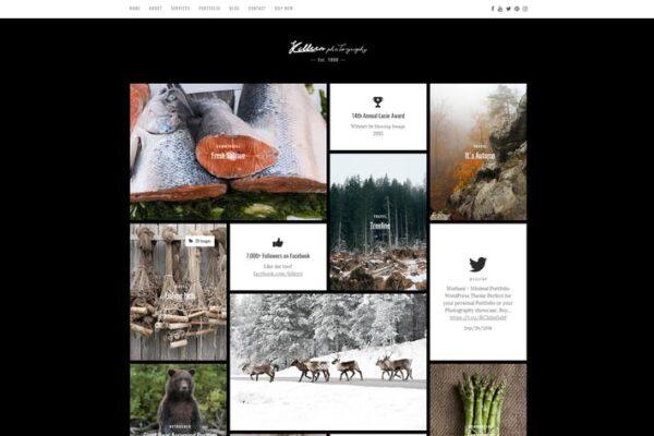 Killeen – Contemporary Portfolio WordPress Theme 1