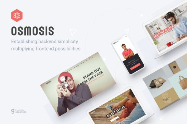 Osmosis - Responsive Multipurpose WordPress Theme 1