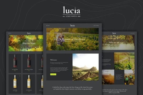 Lucia - Wine WordPress Theme 1
