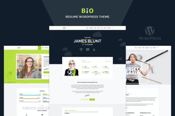 Resume, CV, Freelancer WordPress Theme 1