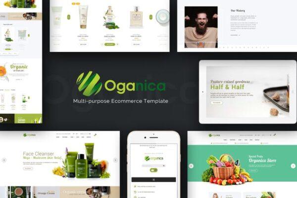 Organica - Responsive WooCommerce WordPress Theme 1