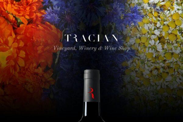 Tracian - Wine WordPress Theme 1