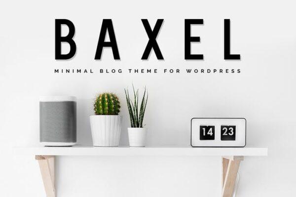 Baxel - Minimalist WordPress Blog Theme 1
