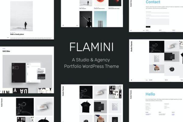 Flamini - Studio/Agency Portfolio WordPress Theme 1